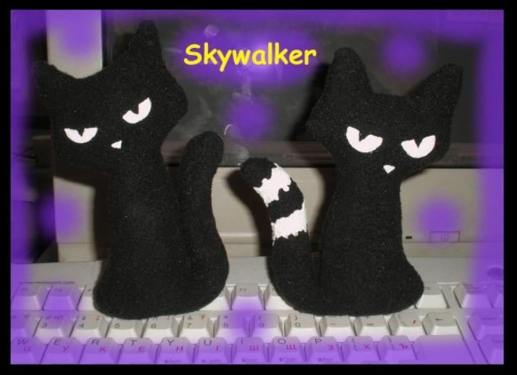 Черные кошшки