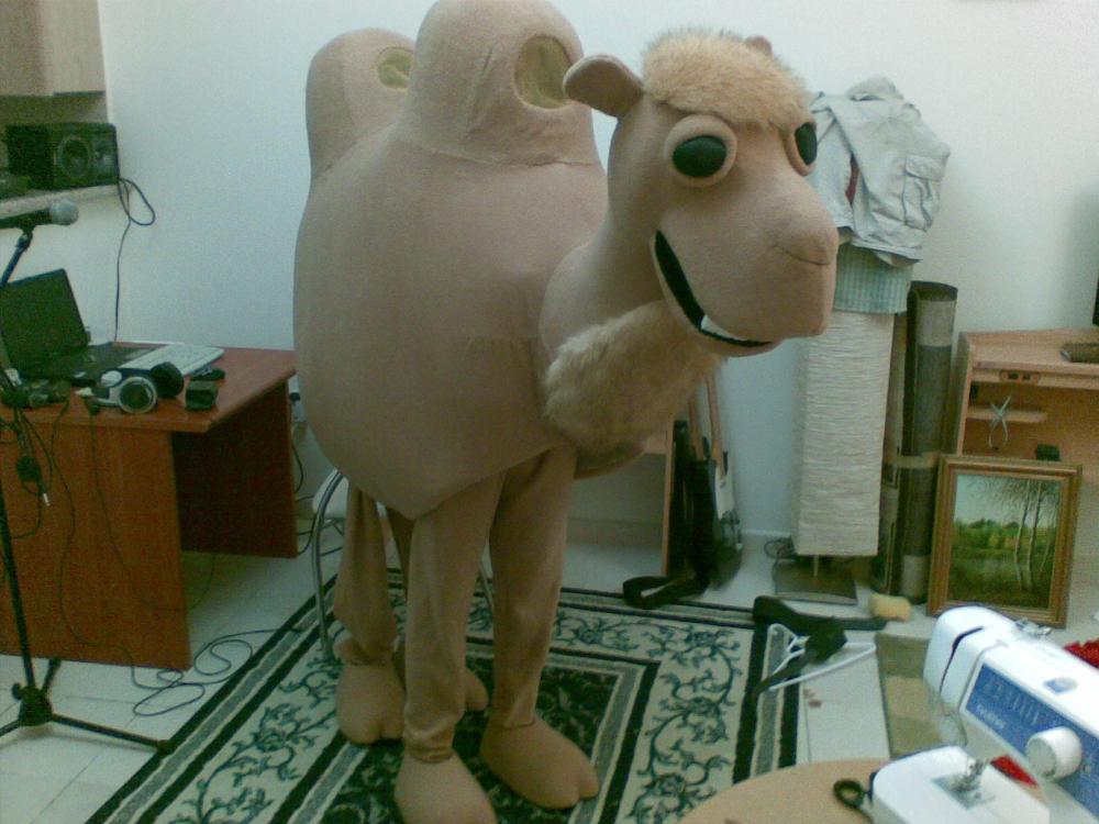 мой верблюд двугорбый