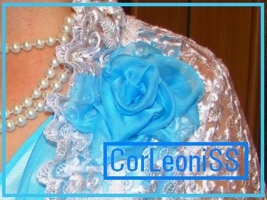 голубая роза.JPG