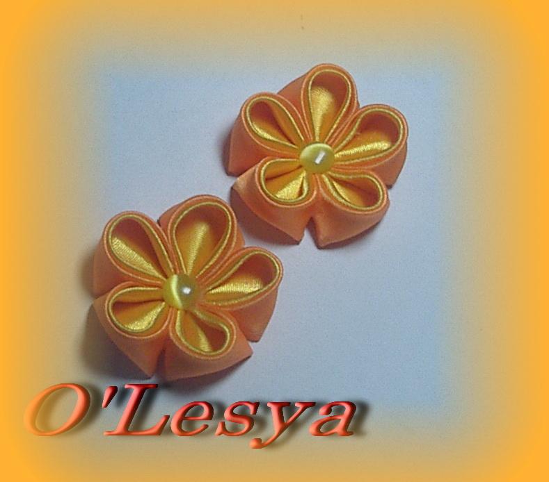 015 Резиночки Апельсинки ц-220.jpg