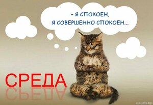 sreda_0227.jpg