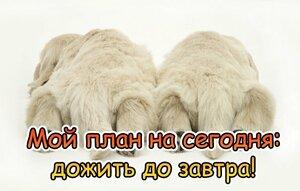 22200349_d696372bf7a0efb810a5500bed06d428_800.thumb.jpg.93aae8a2d2d4f2a57b58160a270f4551.jpg