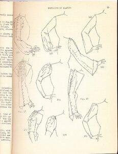 Designing by Draping - 1936 5.jpg