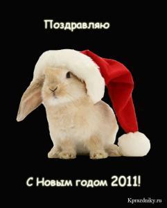 post-11609-1293808673_thumb.jpg