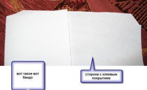 post-1198-1240075394_thumb.jpg