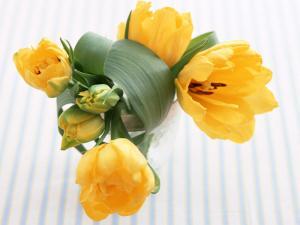 flowers_1284.jpg