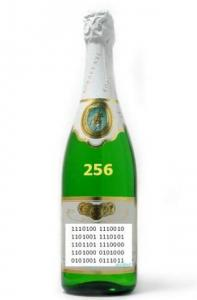 den_programmista_shampanskoe_butilka_na_prazdnik.jpg