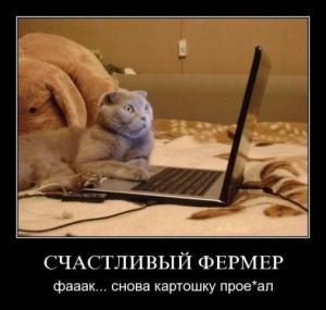 post-17842-1317064644_thumb.jpg