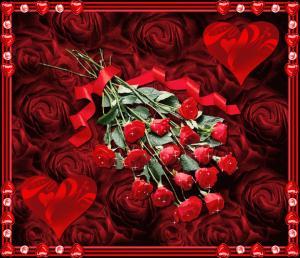 post-19918-1314791134_thumb.jpg