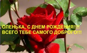 post-19973-1553102745_thumb.jpg