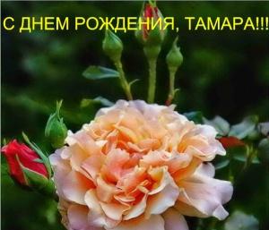 post-19973-1511881795_thumb.jpg