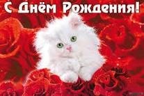 post-23155-1496785214_thumb.jpg