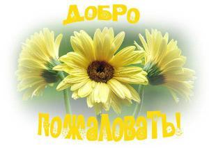 post-24314-1412661075_thumb.jpg