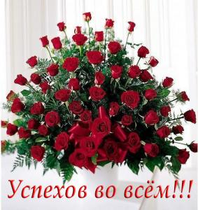 post-25150-1350846980_thumb.jpg
