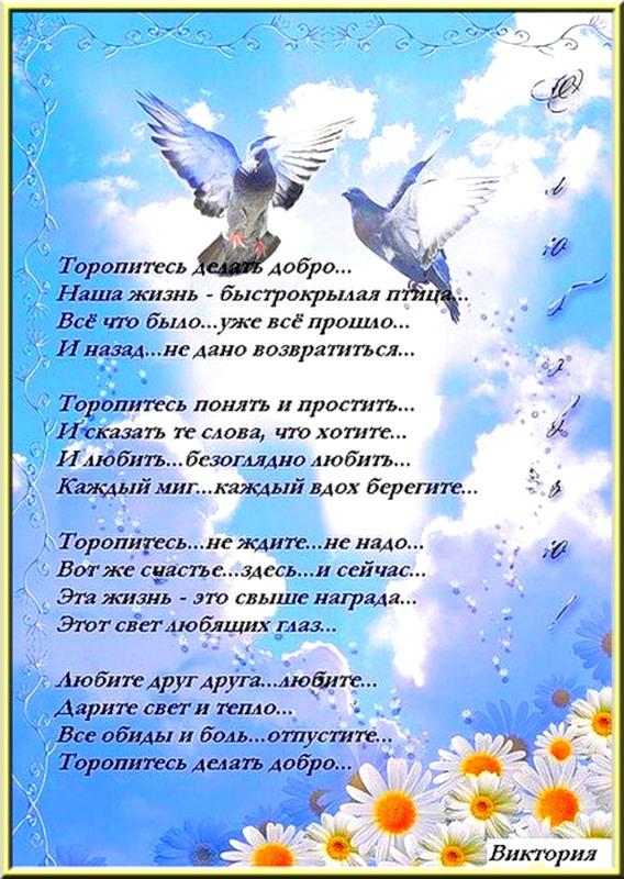 самые светлые стихи колода мечта миллениала
