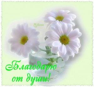post-31635-1573378559_thumb.jpg