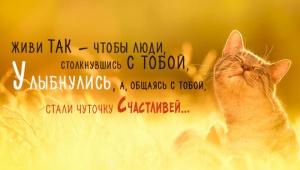 post-42275-1542209079_thumb.jpg
