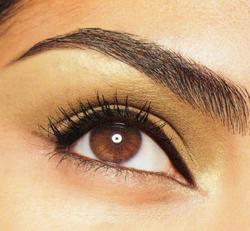 classic_beautiful_eyebrows_brow.jpg