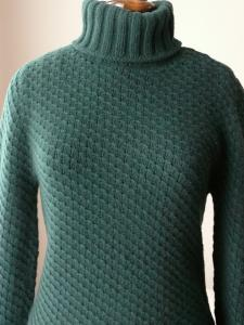 liselottez_s_Winter_Sports_Turtleneck02.JPG
