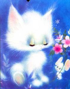 7_5252936_cat.jpg