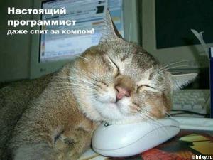 post-9718-1285217215_thumb.jpg